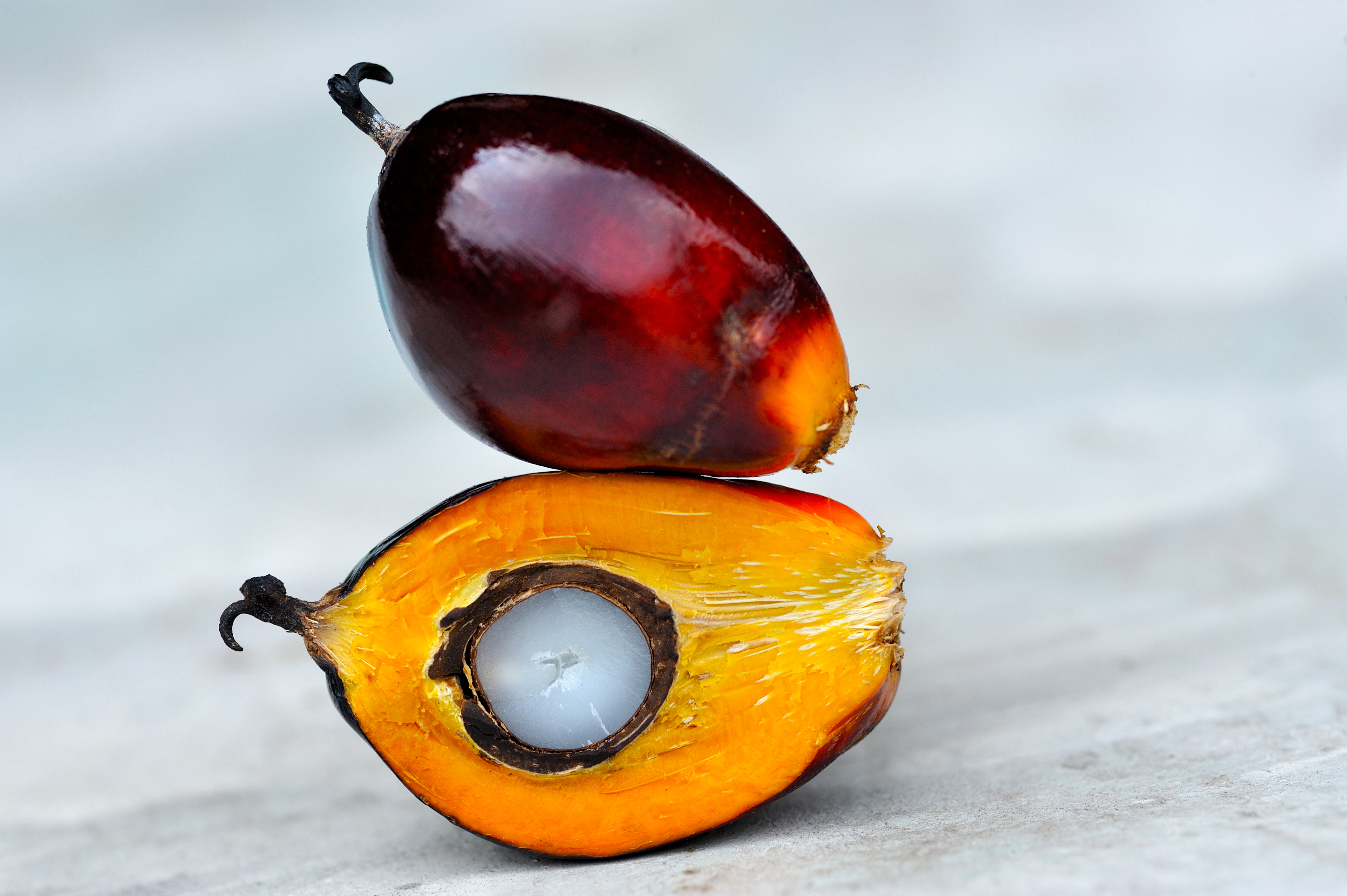 Clariant Awarded Rspo Mass Balance Certification For Asia Pacific