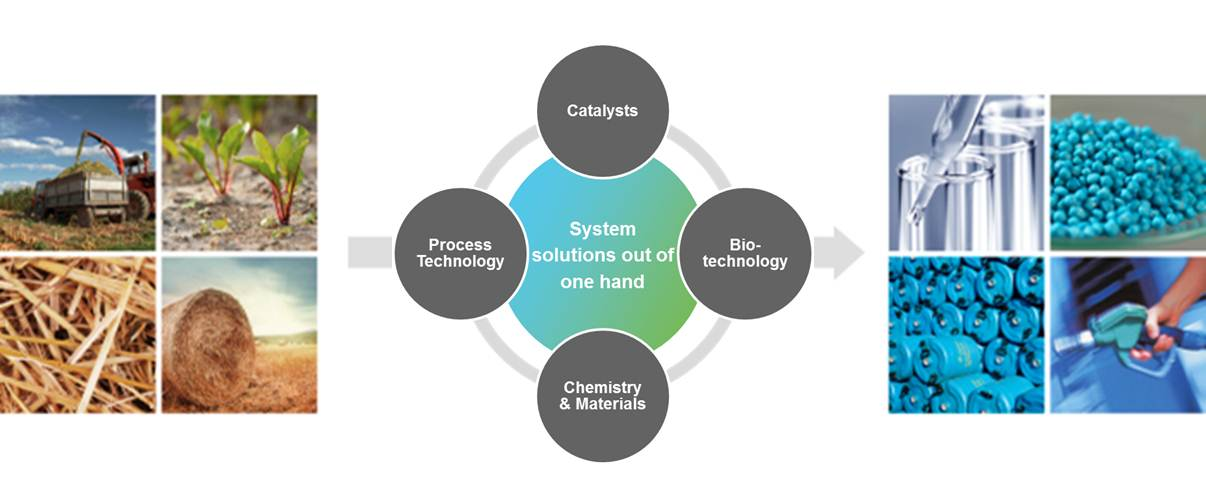 Group_Biotechnolohy_strategy